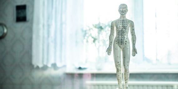 Ganzheitsmedizinische Körpertherapie auf netzperlentaucher.de