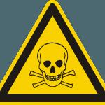 Detox was ist das? - Versuch einer Erklärung auf netzperlentaucher.de
