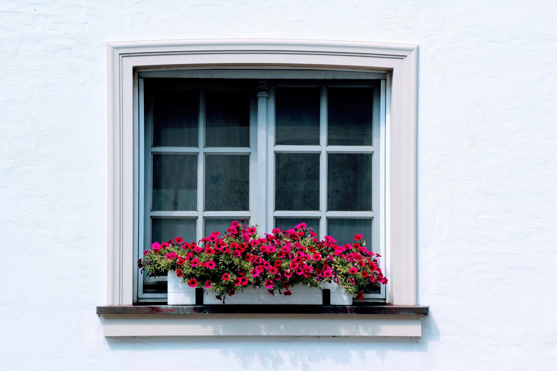 Kunststofffenster oder holzfenster netzperlentaucher - Kunststofffenster oder holzfenster ...