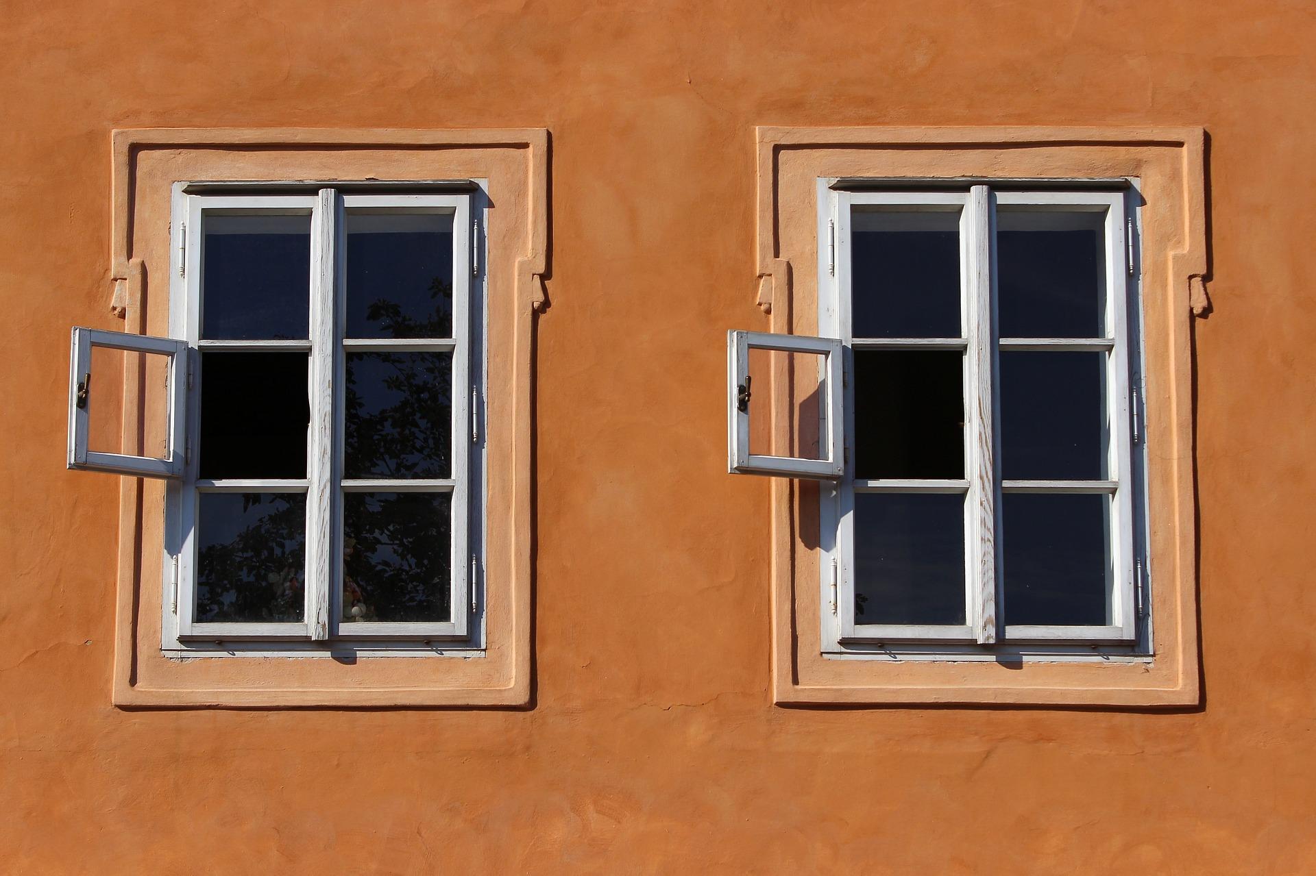 Kunststofffenster oder holzfenster netzperlentaucher for Holzfenster kunststofffenster